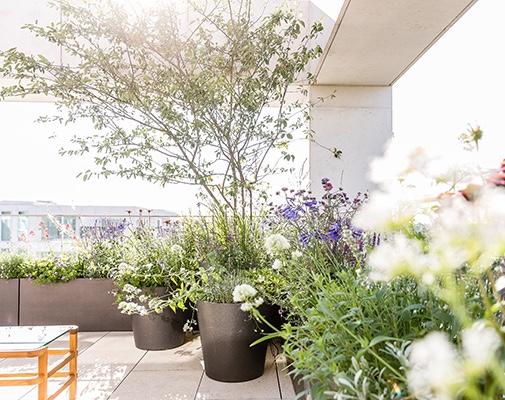 Stefano Marinaz Landscape Architecture Ltd